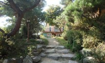 02_the_entrance_of_our_center.jpg