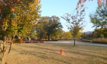 34_the_park_by_our_center_in_autumn_colors,_with_the__river_in_the_background.jpg